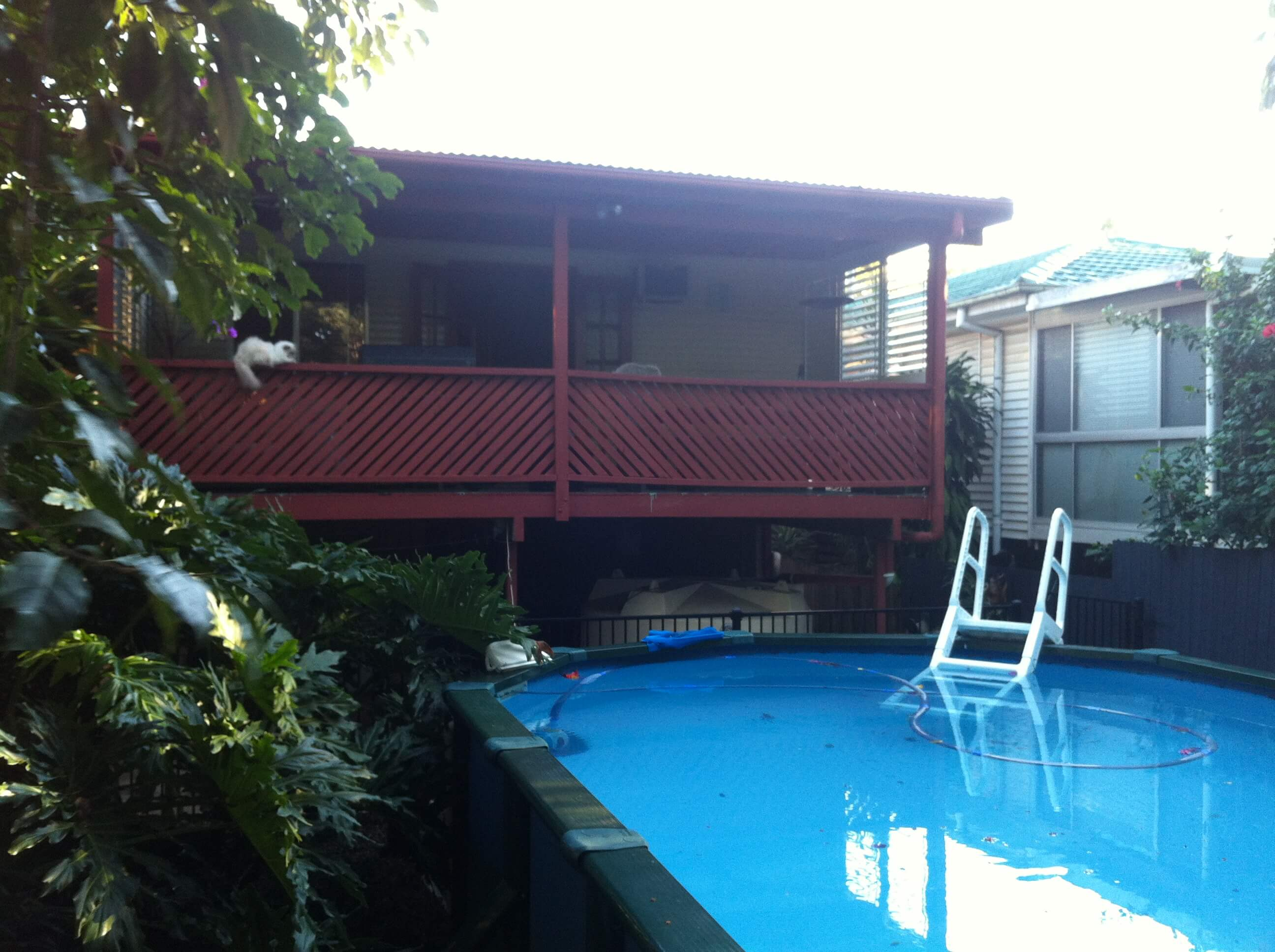 Adaptit deck around pool before construction