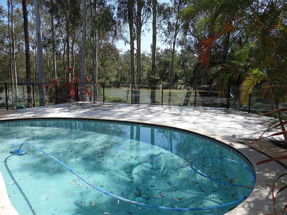 Swimming Pool Decking Designs Jindalee